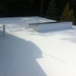 KOhoutovice Sikaplan 15g - Rekonstrukce protékající střechy